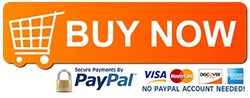 Buy Now PayPal Button Image